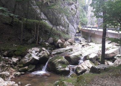 découverte du Jura